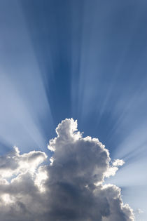 Crepuscular or God's rays streak past cloud von Danita Delimont
