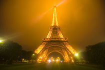 Eiffel Tower illuminated at night by Danita Delimont