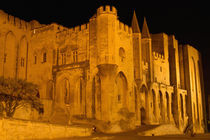 Papal Palace at night von Danita Delimont