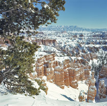 Fills the canyons and covers the hoodoos von Danita Delimont