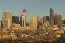 Calgary: City Skyline from Ramsay Area / Morning by Danita Delimont