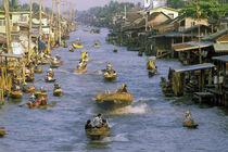 Near Bangkok by Danita Delimont
