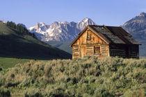 Idaho by Danita Delimont