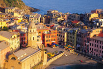 Village of Vernazza in the evening from above von Danita Delimont