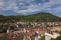 Town view from Castello Malaspina von Danita Delimont