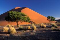 Sossosvlei dunes by Danita Delimont