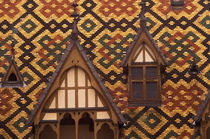 Tiled roofs of the Hotel Dieu by Danita Delimont