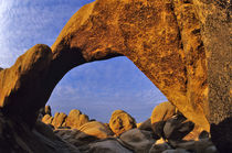 Arch Rock at Joshua Tree National Park in California von Danita Delimont