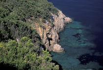 Rocky coast; Cala Grande; Promontorio Dell'Argentario von Danita Delimont
