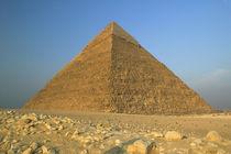 Egypt von Danita Delimont