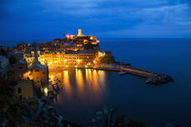 Night View of the Hillside Town of Vernazza by Danita Delimont