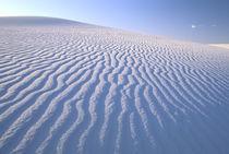 White sand dunes landscape von Danita Delimont