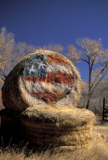 Patriotic hay roll with US flag; patriotism von Danita Delimont