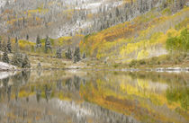 Fresh snow and aspen trees reflected in Maroon Lake von Danita Delimont