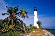 Key Biscayne Lighthouse by Danita Delimont