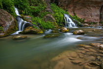 The Virgin River Narrows and Big Springs by Danita Delimont