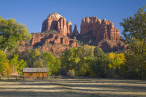 Red Rock Crossing; Cathedral Rock and trees with fall color by Danita Delimont