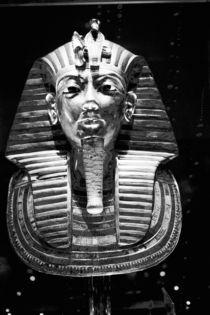 King Tut's Head von Danita Delimont
