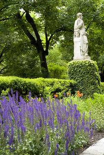 Royal Botanic Garden aka Real Jardin Botanico by Danita Delimont