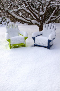 Snow Covered Adirondack Chairs von Danita Delimont