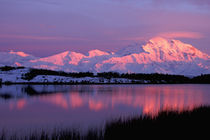 Denali in late evening alpenglow by Danita Delimont