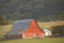Red Barn / Autumn von Danita Delimont