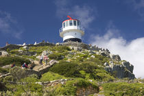 A lighthouse on the Cape Peninsula outside of Cape Town by Danita Delimont
