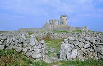 Dun Aengus Fort von Danita Delimont