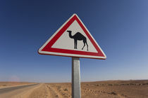 Camel crossing sign von Danita Delimont