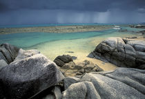 Scenic tropical beach von Danita Delimont