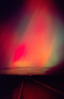 Northern lights at midnight east of Boise von Danita Delimont