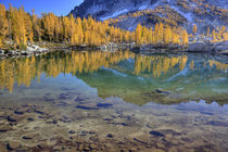 Reflected in Leprechaun Lake by Danita Delimont