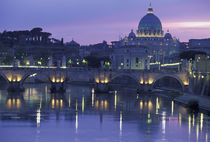 Evening The Vatican by Danita Delimont