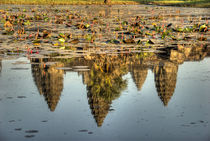 Reflection of temple ruins in pond von Danita Delimont