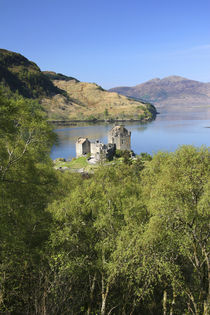 The famous Eilean Donan Castle by Danita Delimont