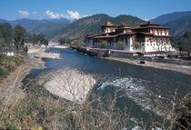 Punakha Dzong von Danita Delimont
