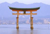 Torii Gate by Danita Delimont