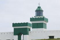 BEDDOUZA: Cap Beddouza Lighthouse by Danita Delimont