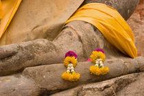 Buddha at Ayutthaya von Danita Delimont