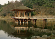 Temple in Nara von Danita Delimont