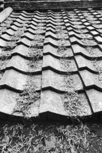 Clay roof detail von Danita Delimont