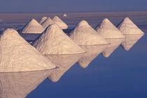 Salar de Uyuni by Danita Delimont