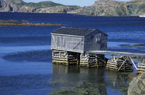 Fishing shack von Danita Delimont
