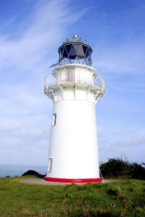 A lighthouse gives warning to ships approaching the eastern cape of New Zealand by Danita Delimont