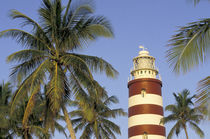 Hopetown Lighthouse von Danita Delimont