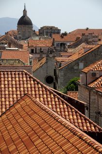 Colorful roof tops as seen from city wall by Danita Delimont
