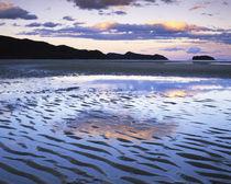 Coast von Danita Delimont