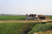 Bourgogne by Danita Delimont