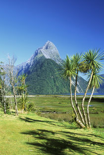 Fiordland NP by Danita Delimont