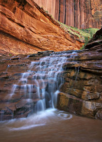 Waterfall in Coyote Gulch von Danita Delimont
